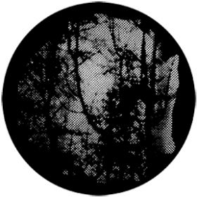 Rosco Metallgobo 77840 ( DHA # 840) Meshed Woodlands